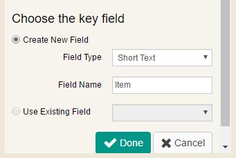 Key Field
