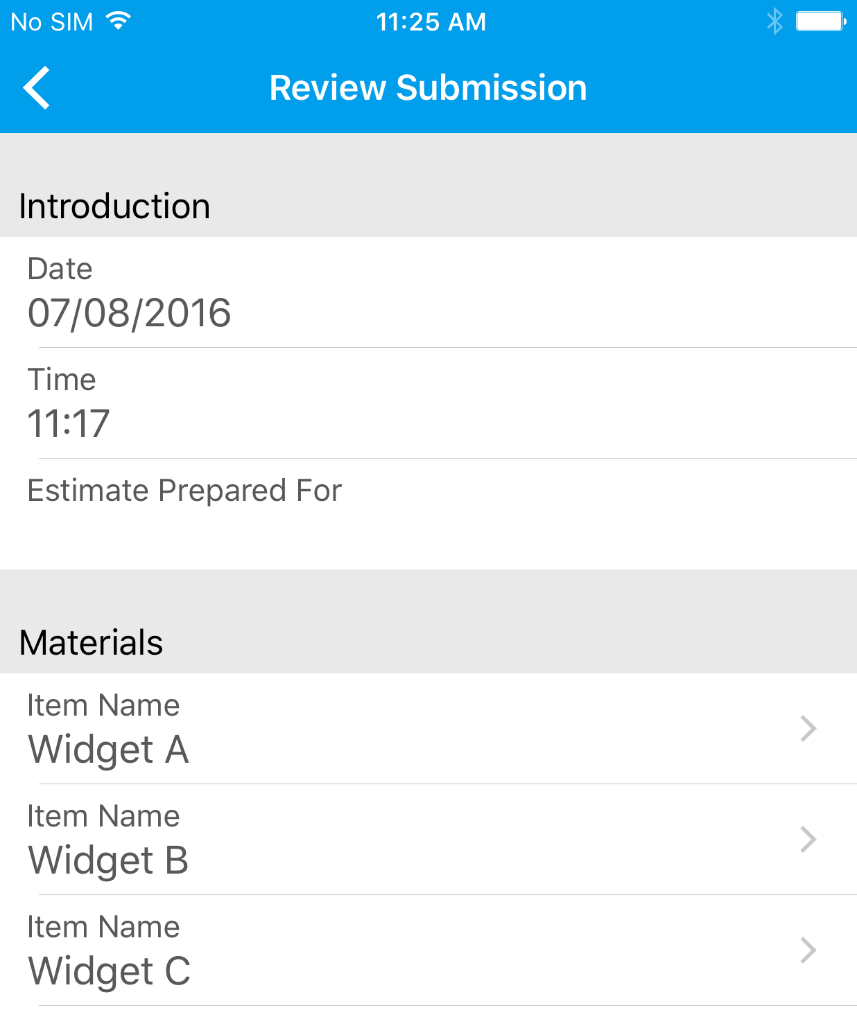 Canvas iOS app review submission screen