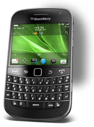 Blackberry Bold with Canvas