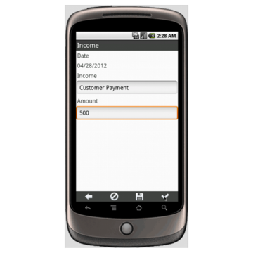 Simple Income and Expenses Balance Sheet Form Mobile App - iPhone ...
